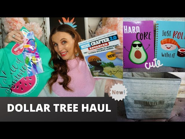 DOLLAR TREE HAUL| ALL NEW FINDS| DOLLAR TREE KEEPS GETTING BETTER