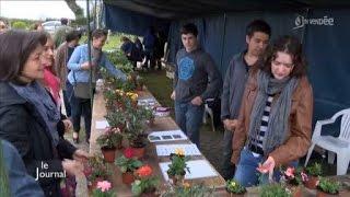 Ferme de la Vergne : Un marché pour créer des liens (Vendée)