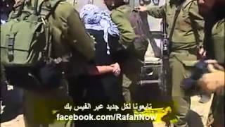 مشهد محزن ومبكي ومايفعله الكلاب مع نساء المسلمين