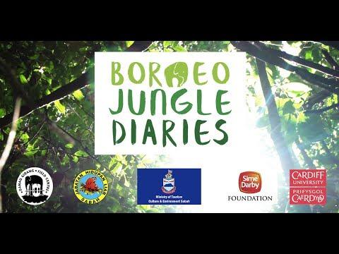 Borneo Jungle Diaries: Official Trailer [UHD/4K] SZtv