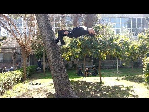 جامعة دمشق - كلية العلوم //  Damascus University