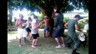 harlem shake - Colider Brazil
