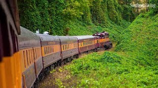 Hop Aboard This One-Time Train Adventure for Ultimate Tour of the Smoky Mountains | Southern Living
