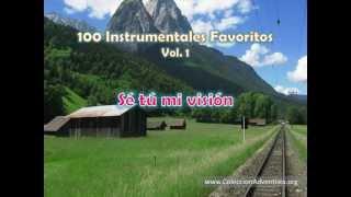 100 Instrumentales Favoritos vol. 1 - 040 Se tu mi vision