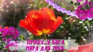 Прошу... у Бога счастья для тебя...