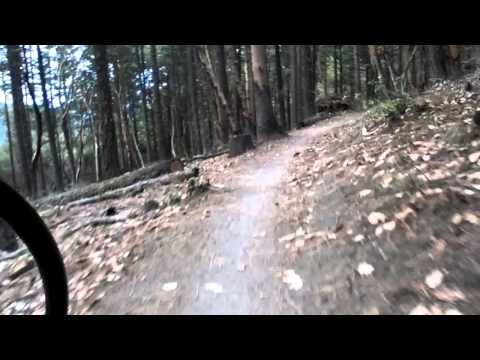 White rabbit trails, Ashland oregon