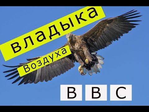 владыка воздуха/BBC
