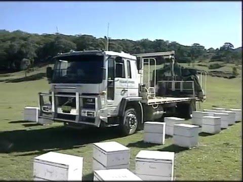 Australian Beekeeping - Apiculture In Australia