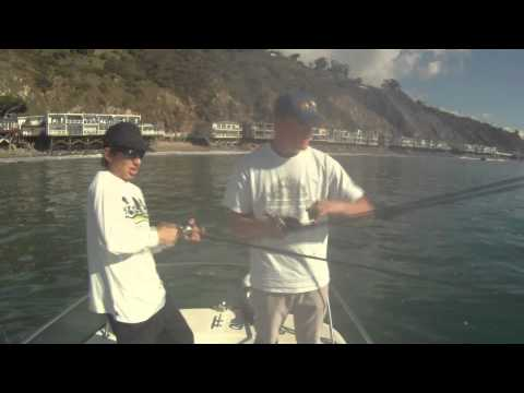 Team Basstic TV - Santa Monica Bay Variety - Calico Bass, Cabezon, and Halibut Fishing
