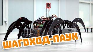 Механический паук с самонаведением на Raspberry Pi. Проекты Амперки