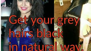 How to turn your grey hairs natural black