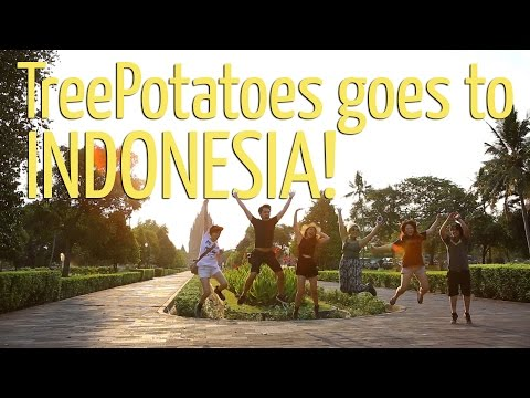 Tree Potatoes Goes To Indonesia! (Full Vlog)