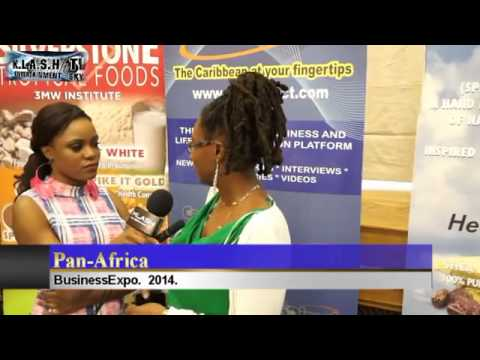 Pan African Business Expo 2014 UK