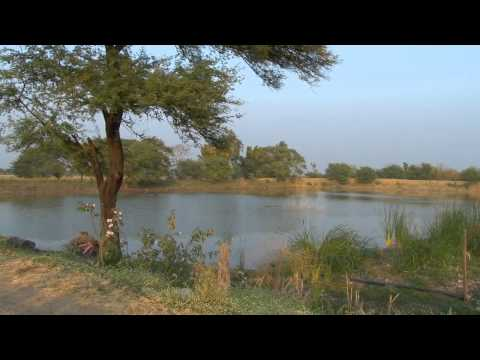 ITP Video: Jal Khet (Water Fields)