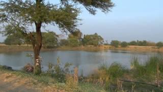 2012 Video Case Study # 2: Jal Khet (Water Fields)