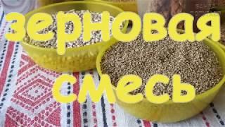📎Наш зерновой корм для волнистиков || Из чего состоит || В каких пропорциях || Часть І