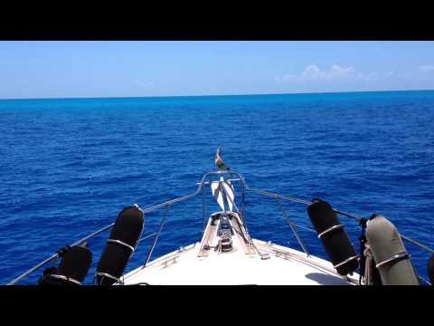 Arriving at the Bahama Banks May 13th 2015