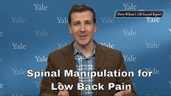 Spinal Manipulation (Chiropractic treatment) for Low Back Pain: Evidence of Effectiveness?