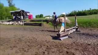 First Time Jumping Sunny!