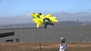 Kite Festival Berkeley Fathers Day Kite 2014 Part 2 Thumbnail