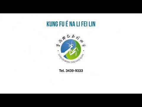 Yi Lu Ba Zhou ( 一路八肘 ) - Mestre Li Fei Lin thumbnail