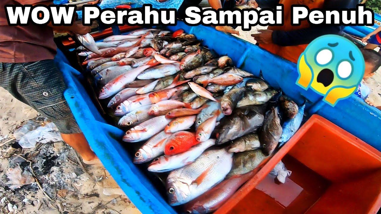 PULUHAN KILO!! Jigging Amatiran Seperti Saya Juga Pasti Dapat Ikan - mancing mania #224 #aslimancing