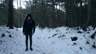 Exploring the Suicide Forest in Aokigahara | ...