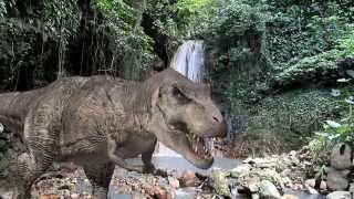 dinosaur videos for kids - beanie boo videos