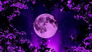 Calming Sleep Healing | 528Hz Miracle Music | Deep Sleeping Music | Tranquil Sleep Meditation