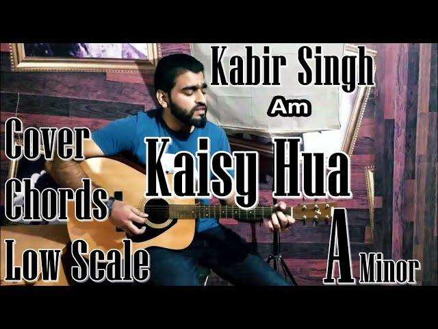 Kaisy Hua | Kabir Singh | Unplugged | Perfect Chords | Guitar Cover Lesson