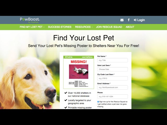 Lost Pet Recovery Startup Creates Great Paws