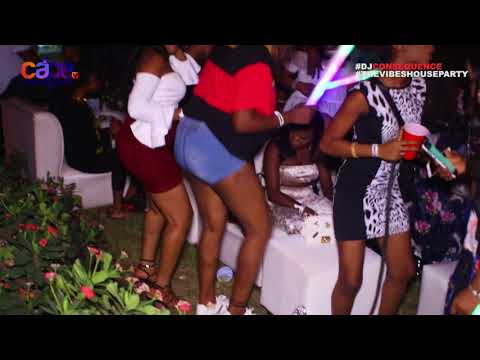 Dj Consequence: The Vibes House Party 2017