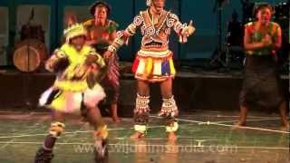This Zambian Performance Will Make You Dance!!