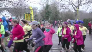 Belfast Telegraph Run Her - Delamont Park - 10k start