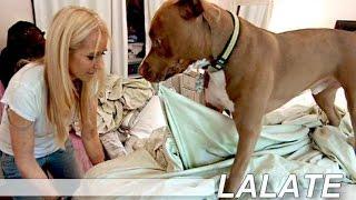 Kim Richards Dog Kingsley Bites Alexia, Kyle Richards Daughter: Pics