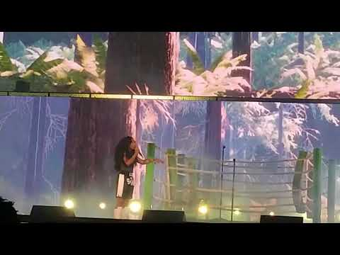 The Weekend - SZA (Live Oakland Coliseum May 9 2018)