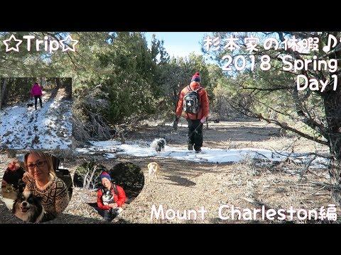 ☆Trip☆杉本家の休暇♪ 2018 Spring Day1 Mount Charlston編