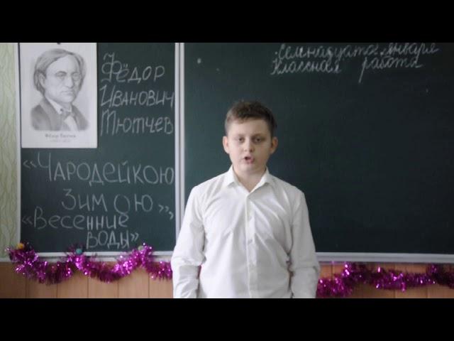 Изображение предпросмотра прочтения – АлександрБарабаш читает произведение «Чародейкою Зимою…» Ф.И.Тютчева