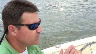 dare marina yacht sales scott james 06 185 sportfish scout
