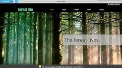 Wix.com Tutorial: Adding full width images