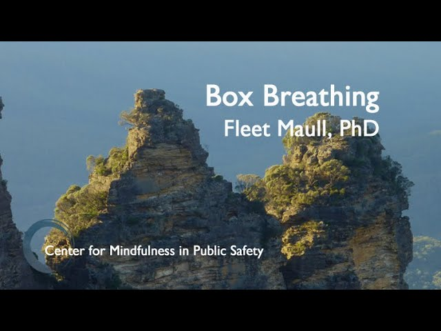 CMPS MBWR Box Breathing