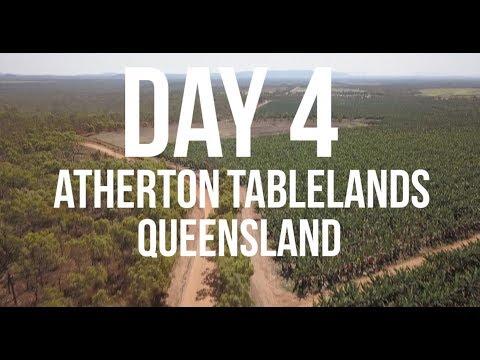 DAY 4 - ATHERTON TABLELANDS | Road Trip Australia