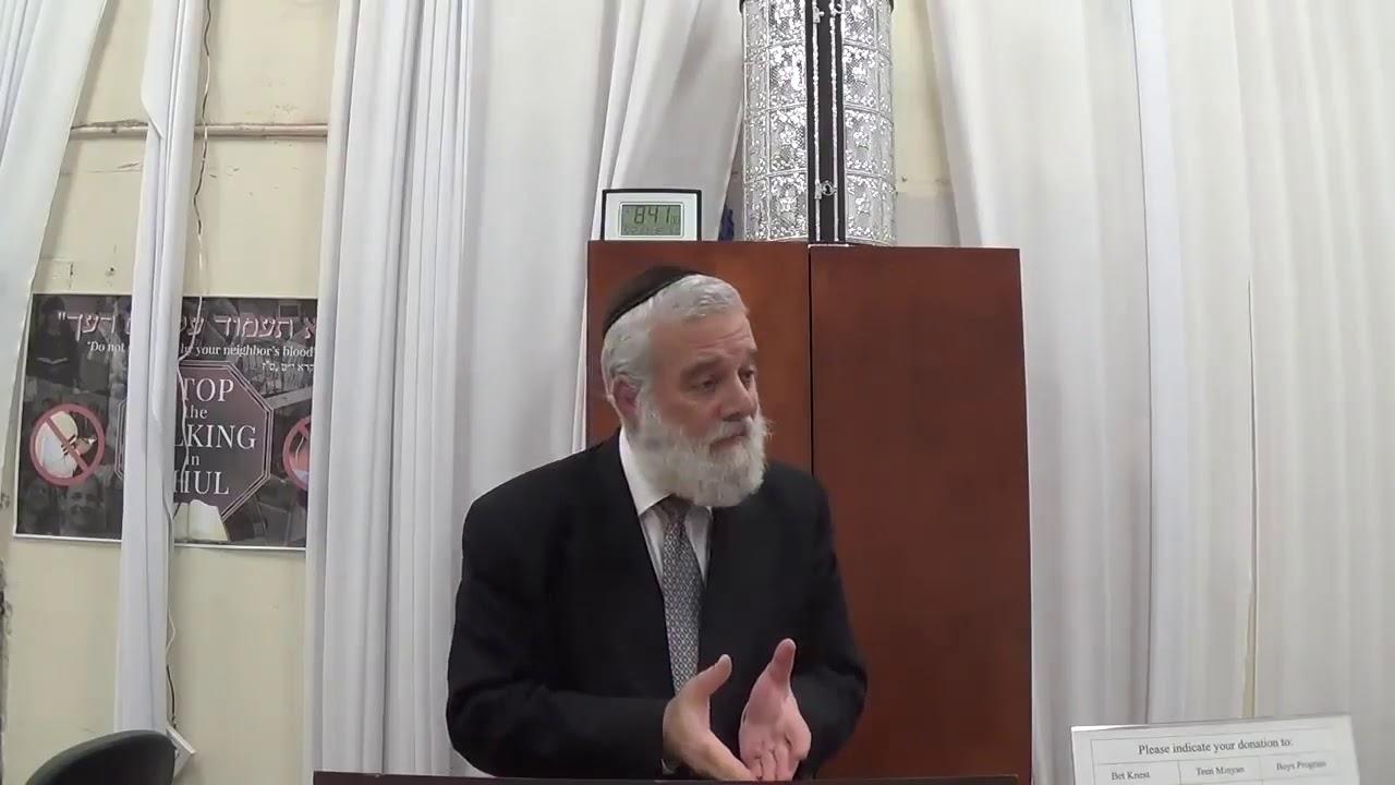 Insights on Parasha Behar by Rabbi Eliyahu Kin