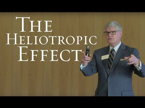 The Heliotropic Effect: The Wheatley Institution's Approach to Ethics and Virtuousness