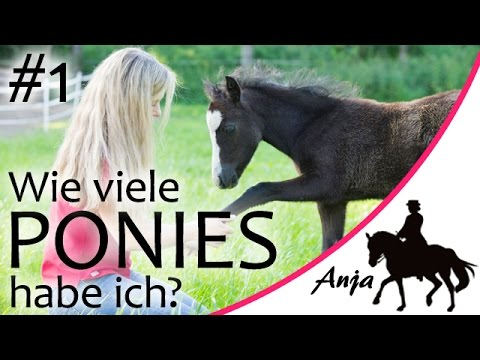 story wie viele ponies habe ich teil 1 youtube. Black Bedroom Furniture Sets. Home Design Ideas