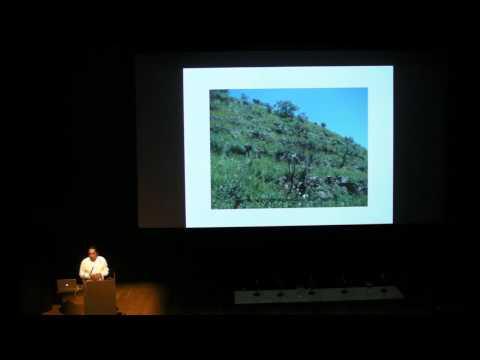 Rights of Nature: Decolonising Indigenous Epistemologies