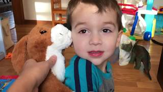 DOG DOG MOOSE: Learning About Dinosaurs. Match Dinosaur Toys With Book