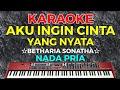 AKU INGIN CINTA YANG NYATA - Betharia sonatha  KARAOKE - Nada Pria