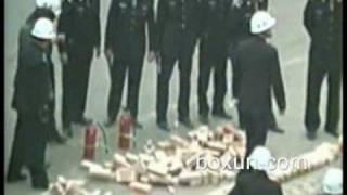广西柳州市窑埠村,2009年8月20日残暴强拆的全程实拍(2)
