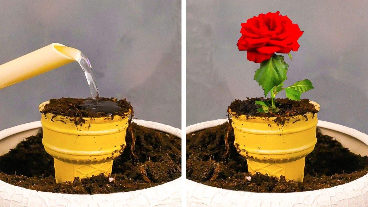 Download Smart GROWING PLANT Hacks for your inner Gardener
